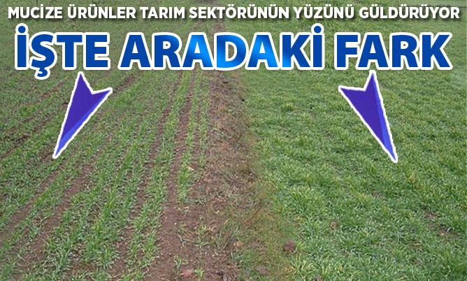 Mucize ürünler tarım sektörünün yüzünü güldürüyor