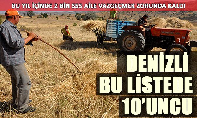 Denizli bu yıl 2.555 çiftçi kaybetti