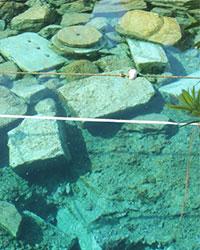 denizli-deprem-sonrasi-antik-havuza-guvenlik-onlemi-serit-cekildi-1