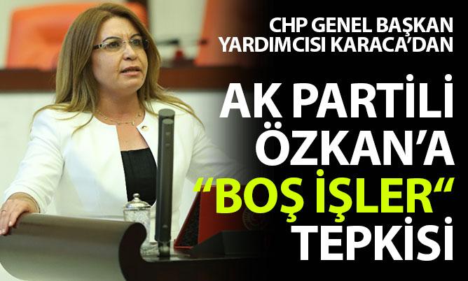 "Karaca'dan Özkan'a ""Boş işler"" tepkisi"